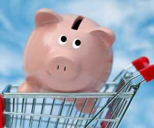 couponing pig in cart