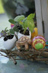 easter egg and gardening