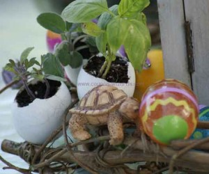 Easter Eggs For Gardening