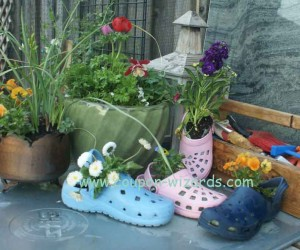 Plant Your Old Crocs in Your Garden