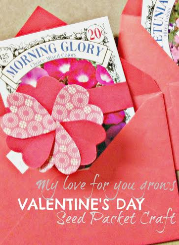 Valentine Seed Packet Craft