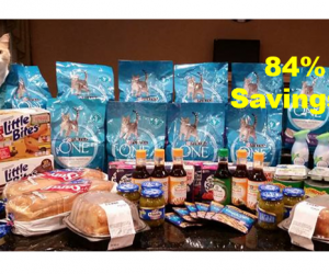 Publix Trip on 9/8 with 84% Savings on $183!