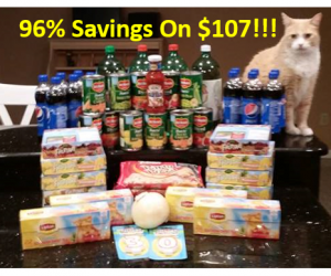 Publix Trip on 10/13 with 96% Savings!