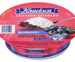 Printable Coupon – SAVE $1 on Knudsen