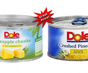 Publix Deal Alert – Dole Canned Fruits $0.43 Each