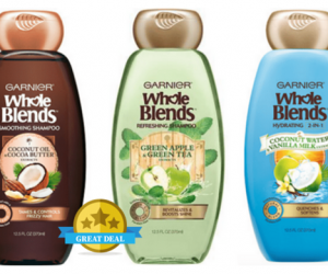 Publix Deal – Garnier Whole Blends Hair Care