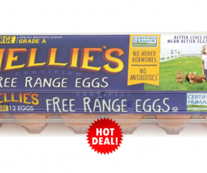 1 Publix Deal - Nellie's Free Range Eggs