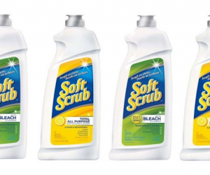 Printable Coupon – SAVE $1 on Soft Scrub Cleansers