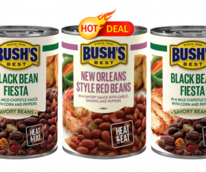 Target Deal Alert on Bush's Savory Beans
