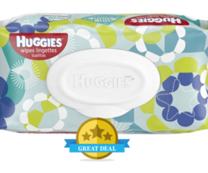 1 Publix Deal - Huggies Soft Pack Wipes