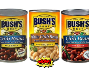 1 Publix Deal - Bush's Chili Beans